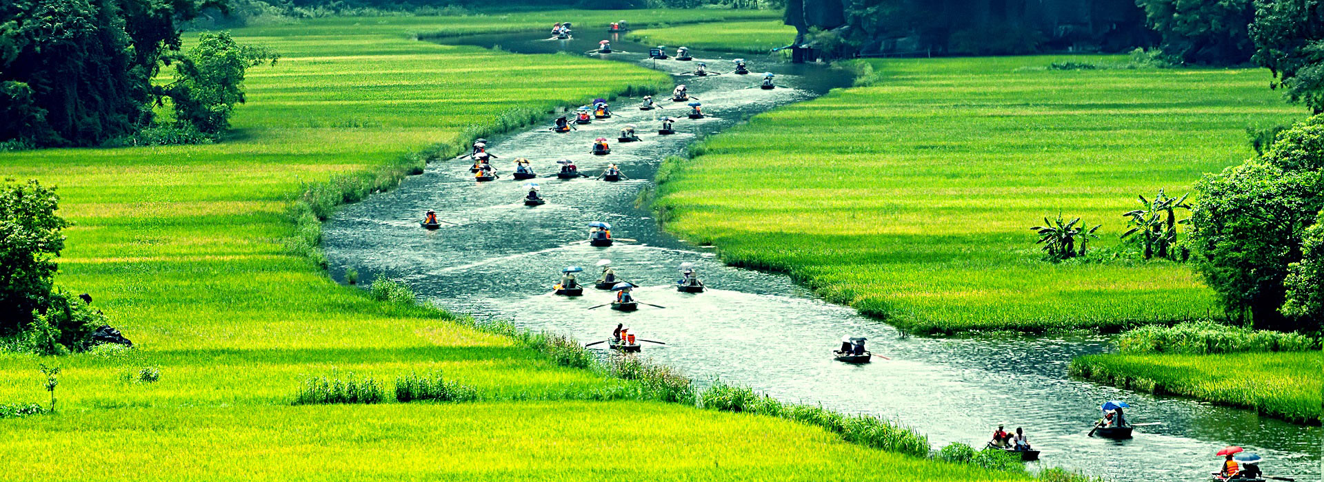 rice_field_and_river_ninhbinh