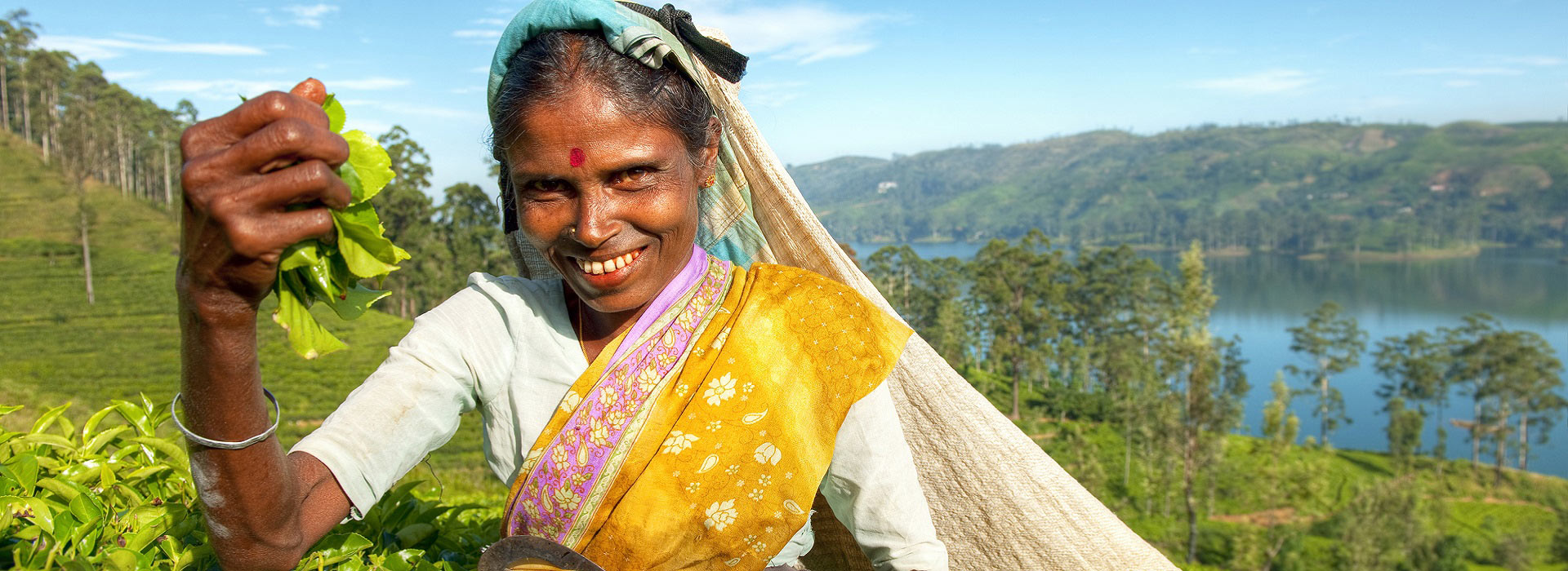 indigenious_sri_lankan_tea_picker