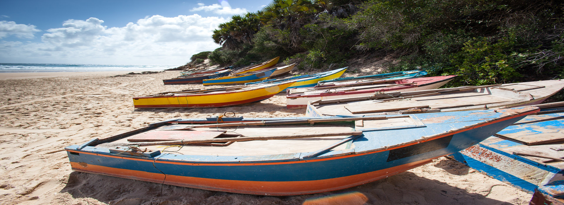 brightly_coloured_traditional_fishing_boats_landed_on_the_white_sandy_beach_on_the_coast_of_tofo_mozambique