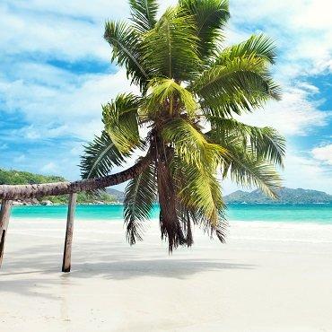 Tour Seychelles Original